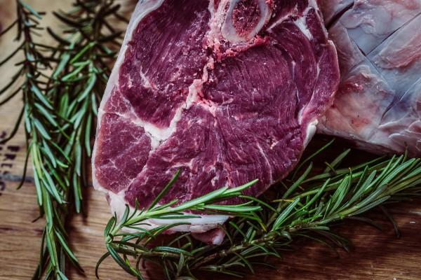 blog-fleisch-high-protein